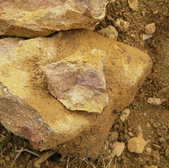 macon-la-roche-vineuse-01
